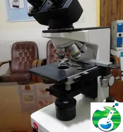 میکروسکوپ لایتز